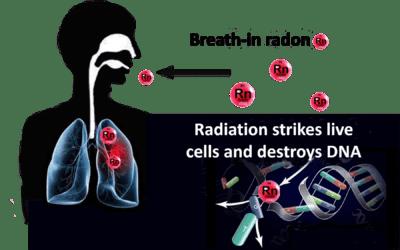 How Carcinogen Radioactive Radon Gas is Monitor Indoor